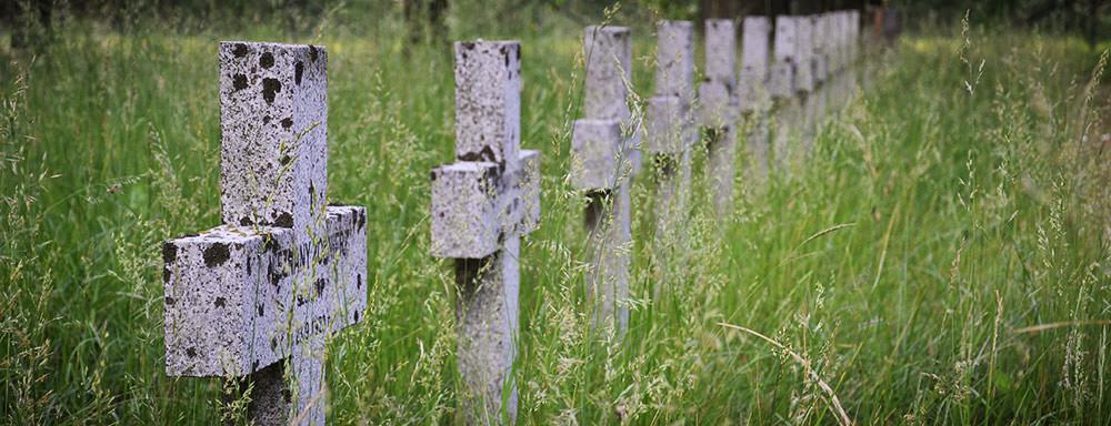 Cmentarz Wojskowy Łuków Łapiguz